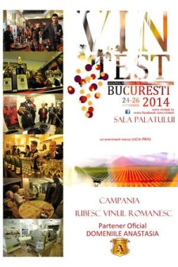 Festivaluri in Bucuresti - Vintest