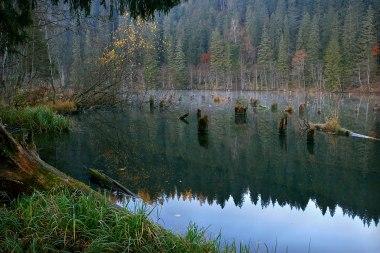 Lacul Rosu - judetul Harghita