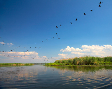 Delta Dunarii - Romania