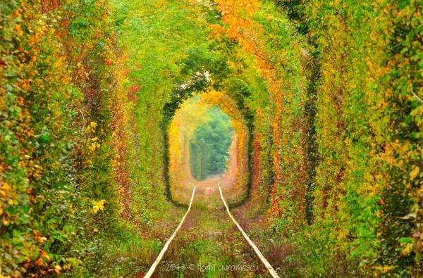tunelul iubirii 1