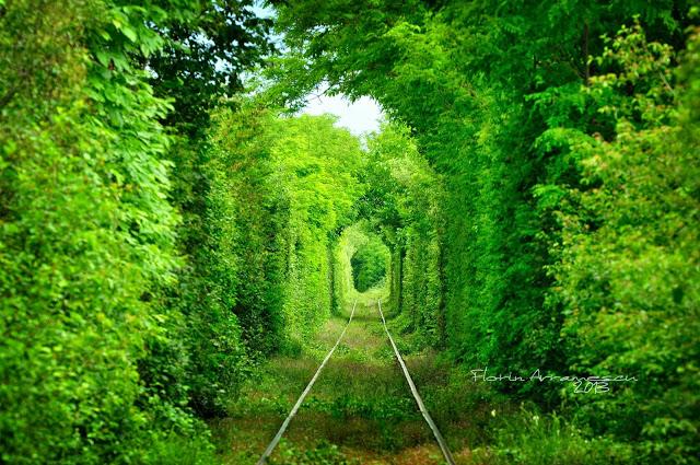 tunelul iubirii 5