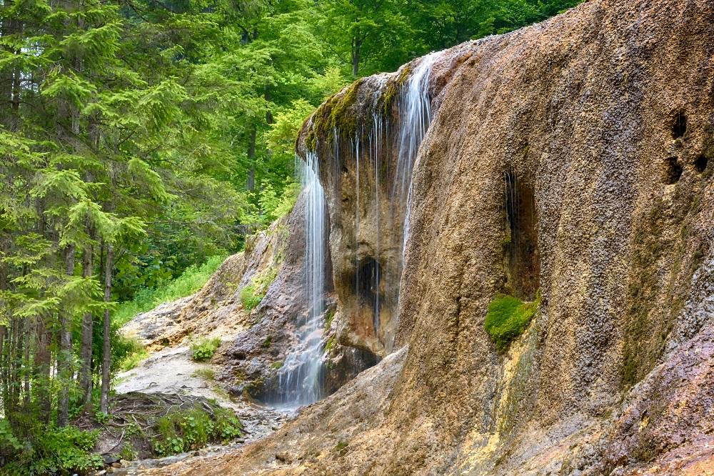 Hurghea Constantin/Shutterstock.com