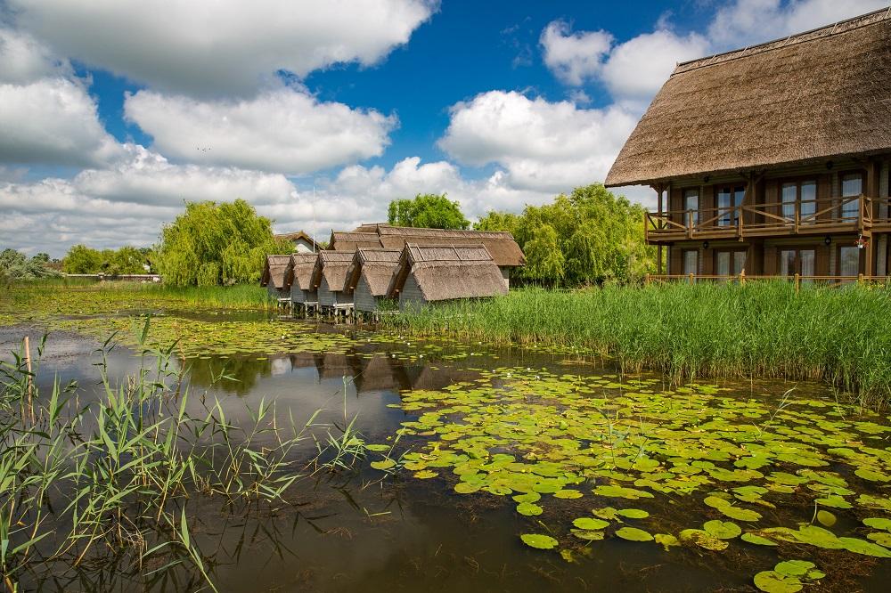 Victor Maschek/Shutterstock.com