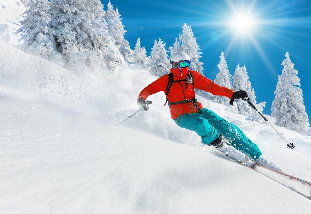 Lukas Gojda/ Shutterstock.com